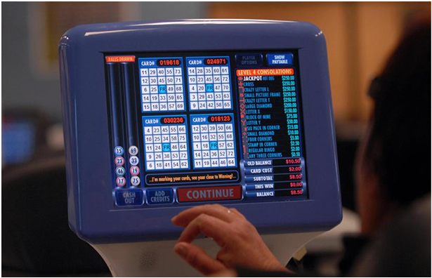 bingo display software